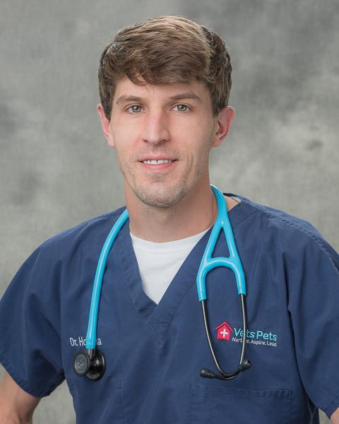 Dr. Hodinka